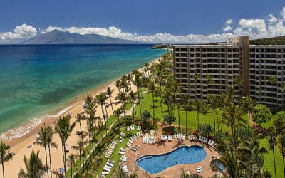 Adventure Awaits in Kaanapali Black Rock Beach Maui
