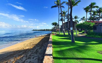 Check Out Papakea Beach Resort Maui Timeshare Interval Ownership