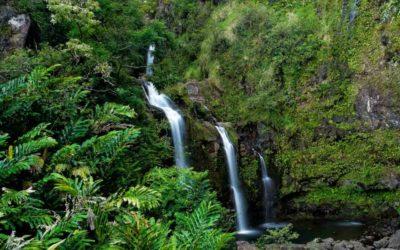 Top 5 Hiking Spots in Maui, Hawaii