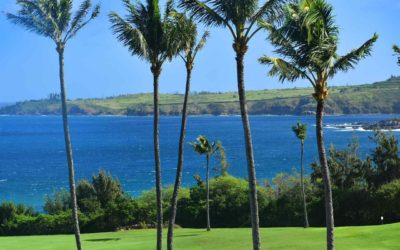 New Kapalua Golf Bay Course Reroute & Improvements