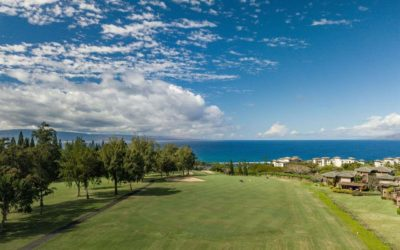 Maui Luxury Condo for Sale at Kapalua Ridge With Dramatic Views