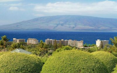 10 Tips for Choosing the Right Maui Home