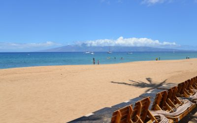 Living in Hawaii? Find the Best Maui Beaches for Families!